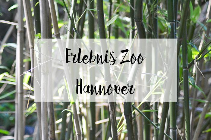 Erlebnis Zoo Hannover - Carotellstheworld